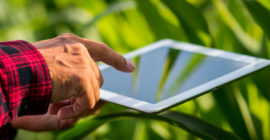 A Transformação Digital no Agronegócio